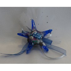 Mavi Deniz Yıldızı
