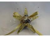 Altın Deniz Yıldızı
